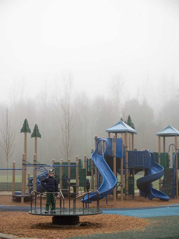Meadowbrook Park in the Fog